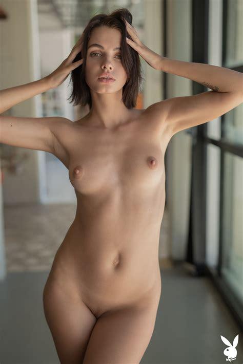 Soft Ombre Brunette