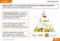 learnhive cbse grade 5 science food lessons exercises