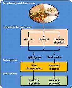 Diagram For Food That Are Carbohydrate by Proposed Integrated Bio Refining Approach For Carbohydrate