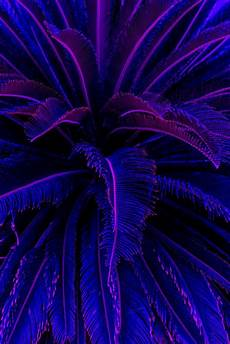 purple aesthetic wallpaper iphone welcome to the wave iphone wallpapers aesthetic