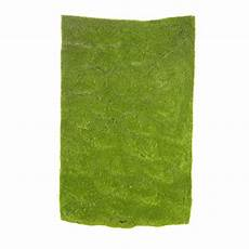 dark green grass sheet drieds natural botanicals