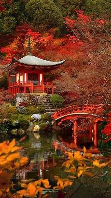 iphone 7 wallpaper fall autumn in japan apple iphone 7 hd wallpapers