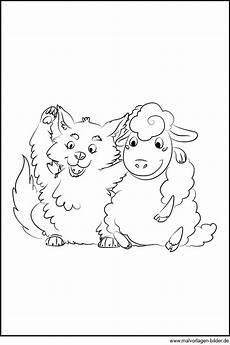 Malvorlagen Und Der Wolf Schaf Und Wolf Kostenloses Ausmalbild Zum