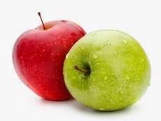 Gambar Buah Apel Segar Info Buah Apel