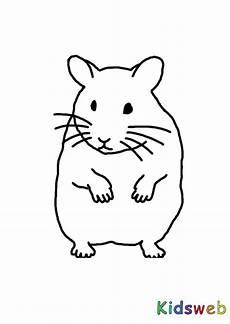 Ausmalbilder Zum Selber Ausmalen Ausmalbilder Hamster Kostenlos Malvorlagen Zum