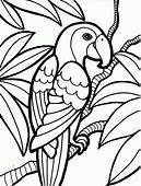 Rainforest Parrot Coloring Page  Download & Print Online