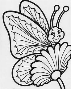 colours drawing wallpaper beautiful colour butterflies