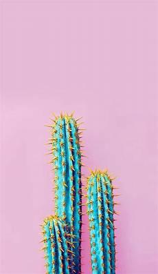 aesthetic cactus iphone wallpaper iphone wallpapers cactus iphone wallpaper sfondi estivi