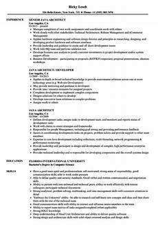 resume of java architect java architect resume sles velvet