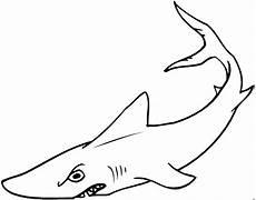 Malvorlage Hai Einfach Malvorlage Hai Einfach