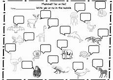 classification of animals worksheets for grade 3 14403 animal classifications unit with images animal classification animal worksheets animal