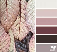 color dew design seeds