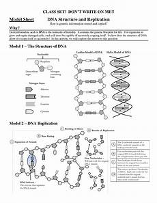 dna the molecule of heredity worksheet