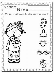 free printable worksheets about the five senses 12629 5 senses worksheets homeschooldressage