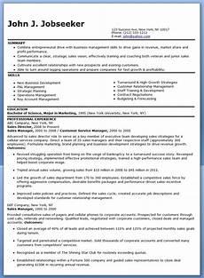 sle sales director resume resume downloads