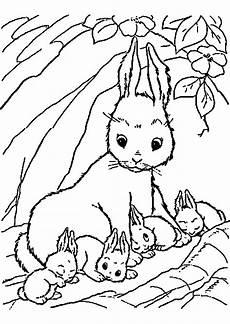 Ausmalbilder Hase Mandala Hasen Bilder Zum Ausdrucken Kostenlos Genial 44 Beispiel