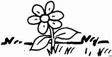 Ausmalbild Schmetterling Wiese Blume Auf Einer Wiese Ausmalbild Malvorlage Blumen