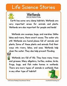 reading comprehension worksheet wetlands