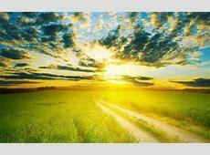 sunshine 1080p wallpaper   HD Desktop Wallpapers   4k HD