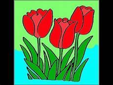 Gambar Bunga Cantik Tulip Merah