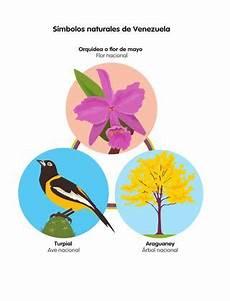 dibujos de los simbolos naturales de venezuela gu 237 a caracol integral 1 by santillana venezuela issuu