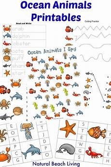 sea animals worksheets for preschoolers 14123 the best animals preschool activities preschool themes preschool weekly themes