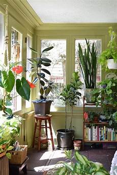Apartment Sunroom Decorating Ideas by And The Plant Filled Sunroom