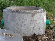 steintröge selber machen einen miniteich anlegen und bepflanzen gartenteich ratgeber