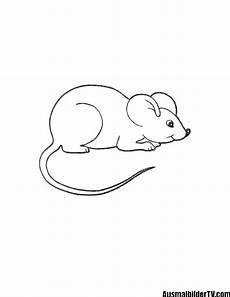 Malvorlage Maus Einfach Ausmalbilder Maus Zum Ausdrucken 1ausmalbilder