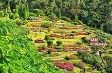 Steile Böschung Bepflanzen - 17 hillside landscaping ideas to beautify your hillside