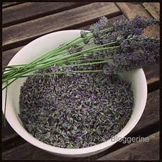 Rezepte F 252 R Lavendel Bloggerine De Don T Panic