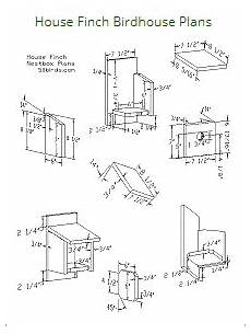 finch bird house plans house finch birdhouse plans bird house plans finch bird