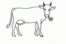 malvorlagen gratis kuh kuh malvorlage kinderbilder