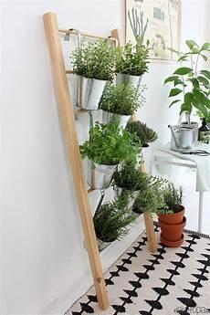kräutergarten küche selber machen kr 228 uterleiter f 252 r drinnen selber bauen diy basteln
