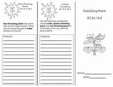 classifying plants worksheets 3rd grade 13524 classifying plants trifold by nuria suarez teachers pay teachers