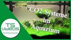 welches co2 system f 252 r mein aquarium vor und nachteile