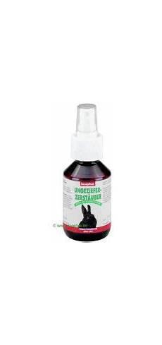 Kaninchen Zwergkaninchen Wichtig Brauche Dringend
