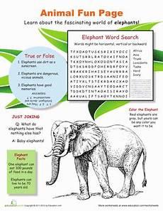 animal worksheets 4th grade 13886 animal elephants worksheet education