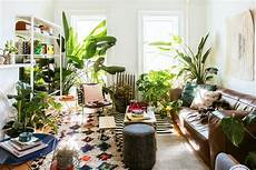 Living Room Home Decor Ideas With Plants by Best Instagram Accounts For Plant Curbed