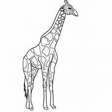malvorlagen fur kinder ausmalbilder giraffe kostenlos