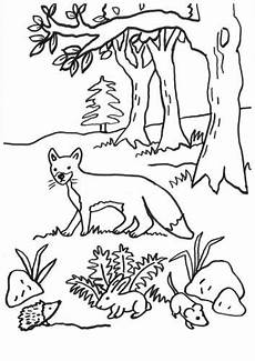 Ausmalbilder Hase Und Igel 1000 Images About Animal Coloring On Coloring
