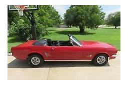 1966 Ford Mustang Cars For Sale  EBay