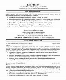 sle server resume 7 exles in word pdf