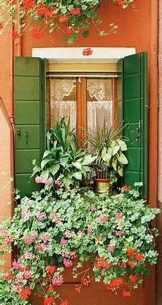 fioriere per davanzale finestra green shutters orange wall infissi window boxes