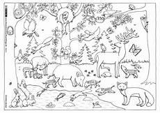 natur wald tiere henkel malvorlagen tiere