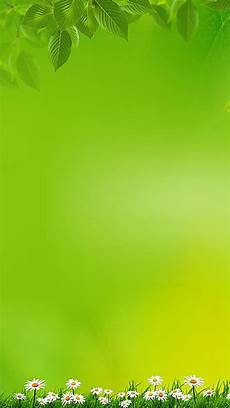 Simple And Green Wallpaper