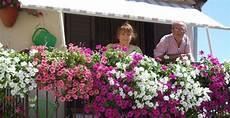 terrazzo fiorito tutto l anno finestre e balconi fioriti pubblicato un bando per