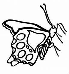 Insekten Malvorlagen Tiere Insekten 00245 Gratis Malvorlage In Insekten Tiere Ausmalen