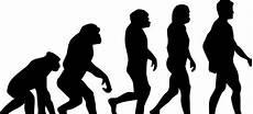 die evolution des menschen darwin und die evolution das spezial auf wissen de