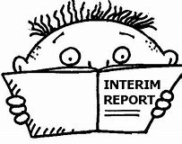 Image result for interim reports